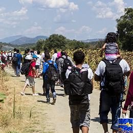 Estudio: Los Chilenos y la inmigración