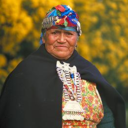 Estudio: Los Mapuches urbanos y rurales de hoy