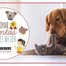 Imagen de la Nota: Nestlé Purina adelanta convocatoria de Fondos Concursables en apoyo a mascotas