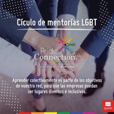 Imagen de la Nota: P&G Chile participó como empresa mentora en el primer ciclo de mentorías impulsado por Pride Connection