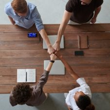Imagen de la Nota: Importante brecha en empresas respecto a la definición de un propósito y su real implementación a todo nivel según Estudio de Almabrands