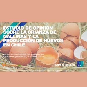 Estudio: Estudio de opinión sobre la crianza de gallinas y la producción de huevos en Chile
